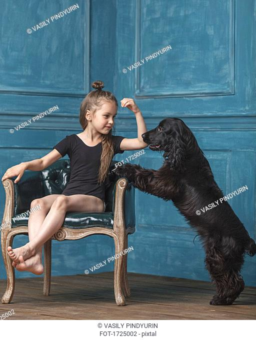 Full length of girl sitting on antique chair while looking at dog rearing up at home