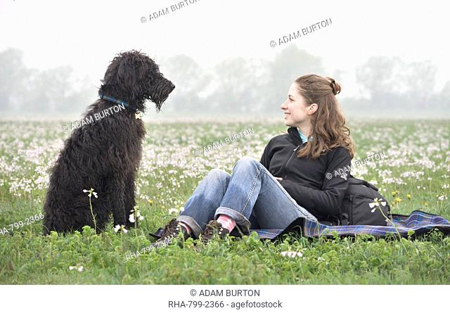 Young woman smiling at Labradoodle pet dog, Wiltshire, England, United Kingdom, Europe