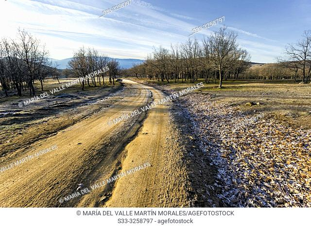 The Zorreras path and Sierra de Gredos on the background early in a winter morning. Avila. Spain. Europe