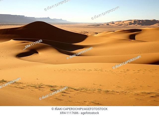 Sand dune and Akakus massif near Ghat , Wadi Tanezzouft, Ghat, Libia