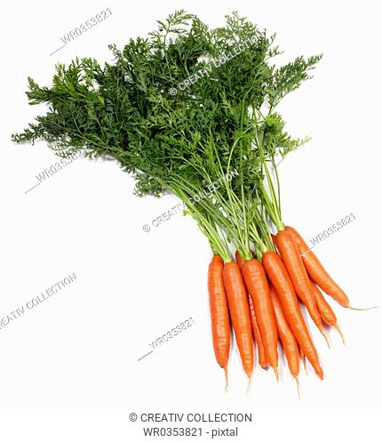 bunch of carrots with stalks
