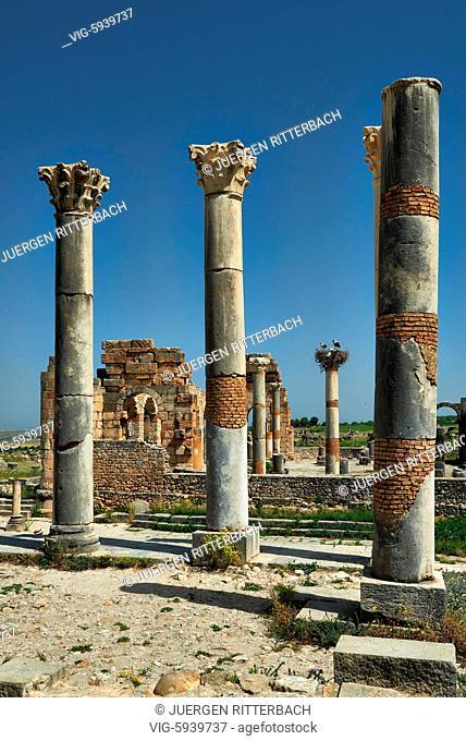 MOROCCO, VOLUBILIS, 24.05.2016, The Capitoline Temple, Volubilis, Morocco, Africa - Volubilis, Morocco, 24/05/2016