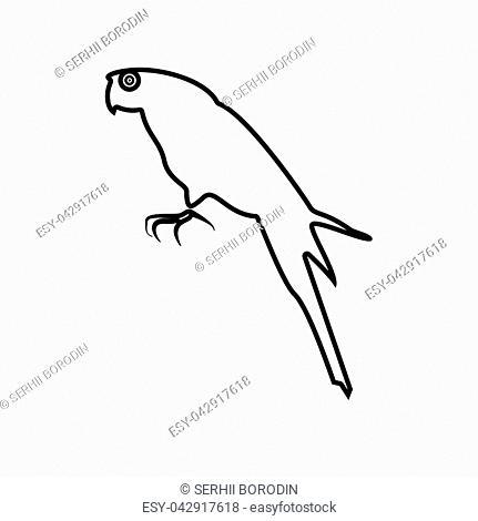 Parrot it is black color icon