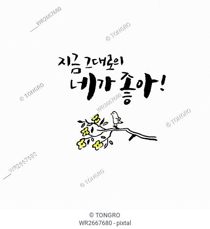 Calligraphic Korean message with spring flowers