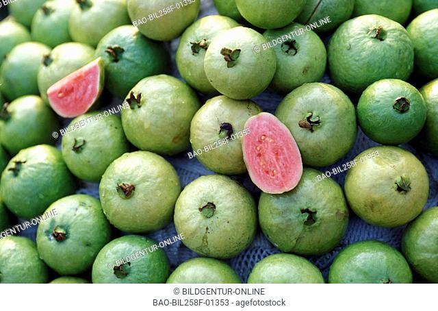 Guava fruits at a market in the Mekong delta near the city of Can Tho in sueden from Vietnam in southeast Asia