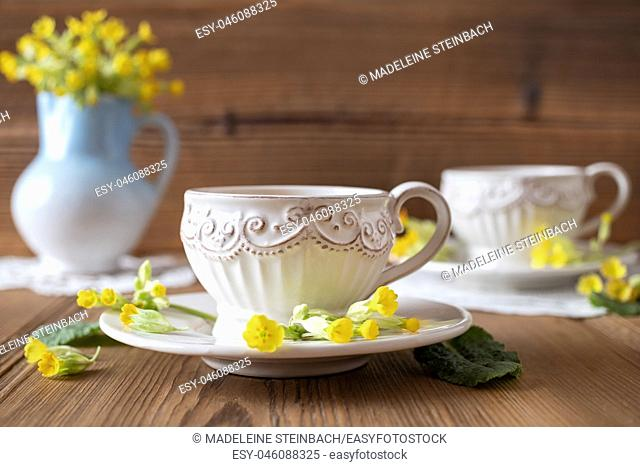 A vintage cup of herbal tea with fresh wild primula flowers
