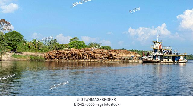 Barge transporting rainforest logs on the Amazon River, Amazonas state, Brazil