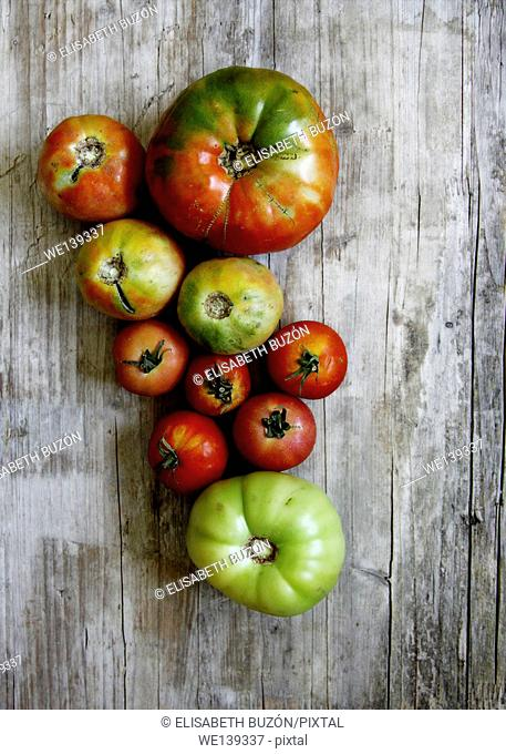 different sizes of tomatoes