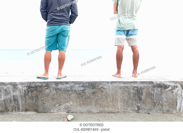 Men on wall looking out to sea, Baler, Aurora, Philippines