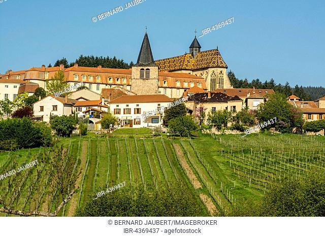 Ambierle, village in Côte Roannaise, vineyard, Ambierle village, Roanne arrondissement, Loire département, Auvergne-Rhône-Alpes region, France