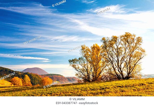Autumn mountainous landscape with trees in the foreground, north of Slovakia, Europe