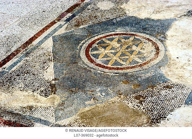 Ancient mosaic floor. Bodrum. Turkey