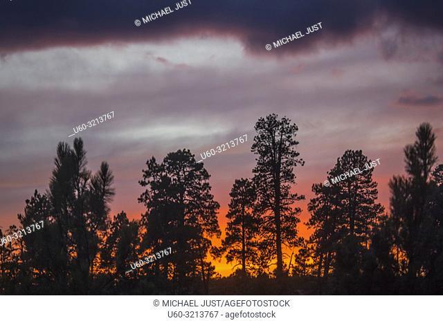 The sun sets along the Kolob Terrace area of Zion National Park, Utah