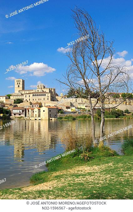 Cathedral and Duero river, Zamora, Silver Route, Castilla-Leon, Spain