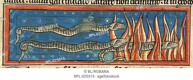 Salamanders crawl through flames, Miniature with text Salamanders crawling through flames which leave them unharmed since they can extinguish them at will