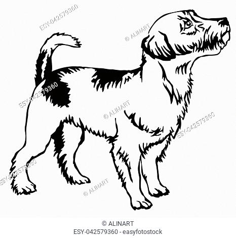 Dog Profile Vector Icon Stock Photos And Images