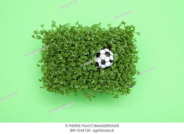 Fresh cress with a miniature football