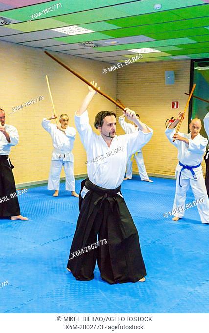 Aikido martial art school