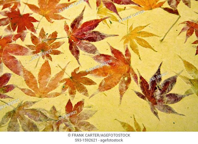 Japanese washi paper with autumn leaves imbedded in it