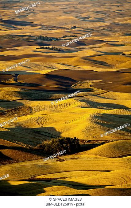Aerial view of rolling rural landscape, Oakesdale, Steptoe Butte, Washington, United States