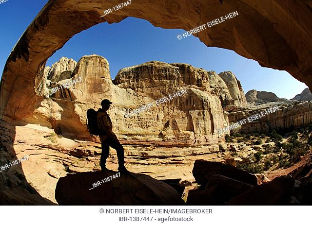 Hiker, Hickman Bridge, Capitol Reef National Park, Utah, USA