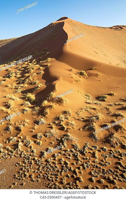 Grass-grown sand dune at the edge of the Namib Desert. Aerial view. Namib-Naukluft National Park, Namibia
