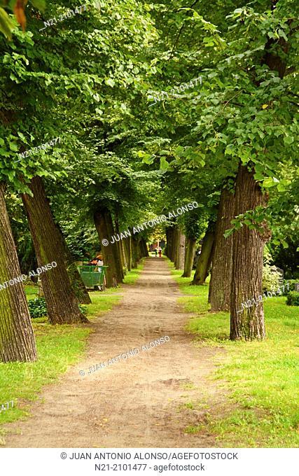 Friedhof der SophienGemeinde. Protestant Cemetery. Berlin-Mitte. Berlin, Germany, Europe