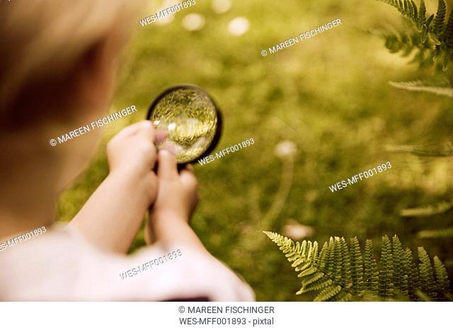 Boy looking through magnifier on fern leaf