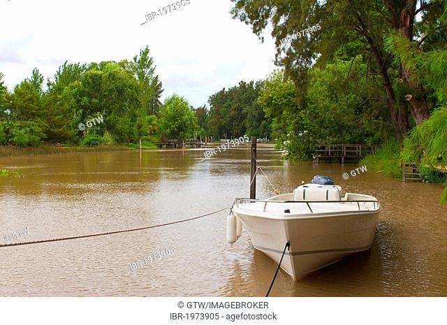 Motor boat along a canal, Tigre, Parana Delta, Buenos Aires, Argentina, South America