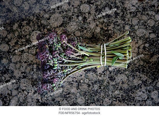 Fresh purple sprouting broccoli