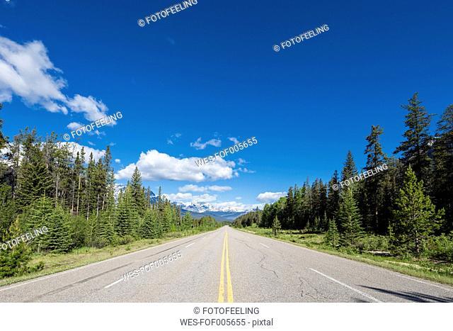 Canada, Alberta, Jasper National Park, Banff National Park, Icefields Parkway