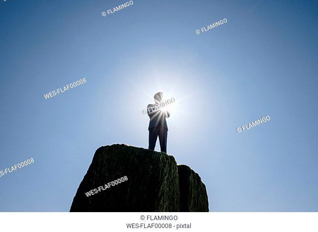 Businessman figurine standing