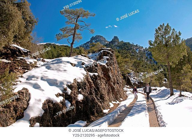 Snowed landscape, Natural Park Sierras de Cazorla Segura y Las Villas, Jaen-province, Region of Andalusia, Spain, Europe,