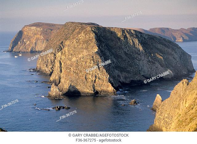 Anacapa Island. Channel Islands National Park. California. USA