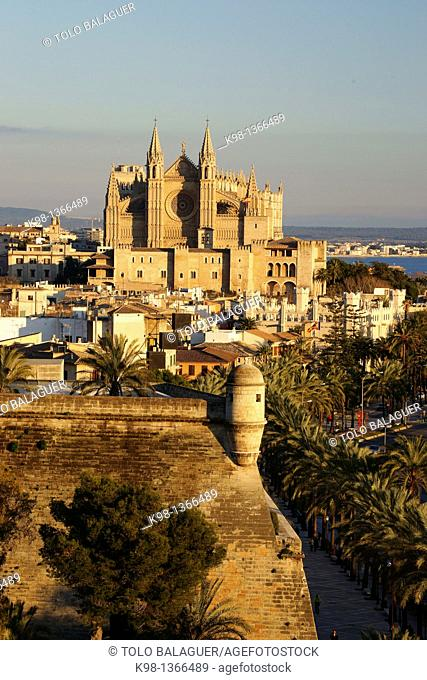 Cathedral of Santa Maria of Palma, Palma, Majorca, Balearic Islands, Spain