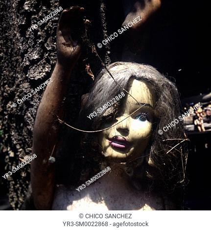 A doll is displayed in the Island of the Dolls, Xochimilco, Mexico City, Mexico