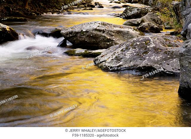 Autumn, Stream, Tremont, Great Smoky Mountains National Park, TN
