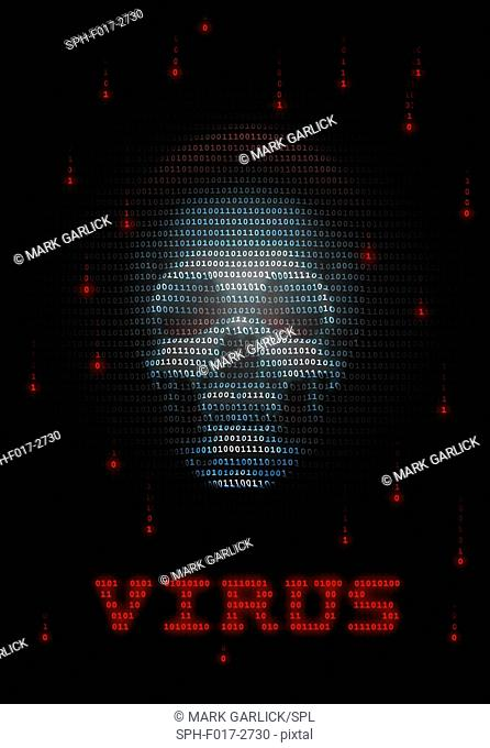 Computer virus, conceptual image. Computer viruses are computer programs that can carry out harmful instructions and copy themselves to other computers