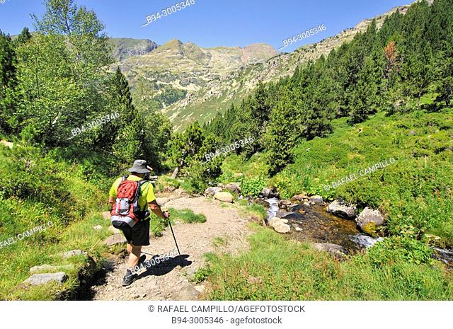 Incles valley. Andorra. Europe