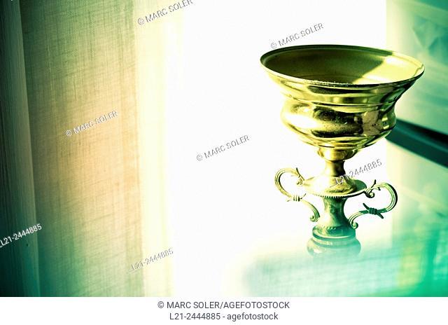 Trophy, cup winners