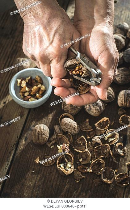 Woman's hands cracking walnuts with nutcracker