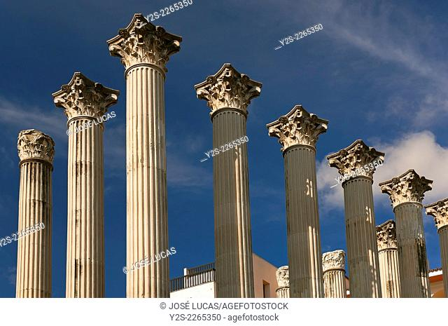 Roman temple - 1st century, Cordoba, Region of Andalusia, Spain, Europe
