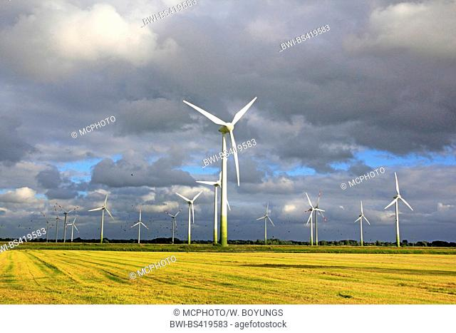 wind wheels with rape field and approaching thunderstorm, Germany, Lower Saxony, East Frisia