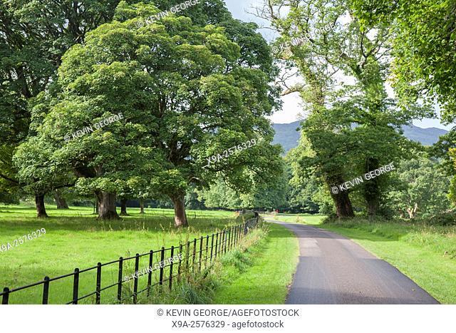 Killarney National Park; County Kerry; Ireland