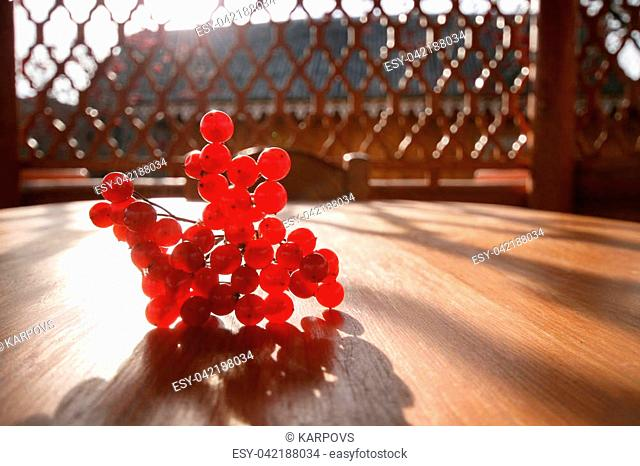 A street arbor. A bunch of red mountain ash on a wooden table