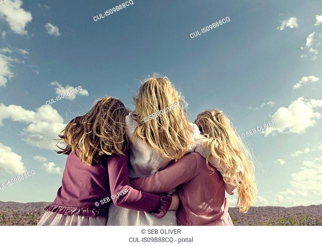Rear view of three girls in pink looking out over field of purple wildflowers