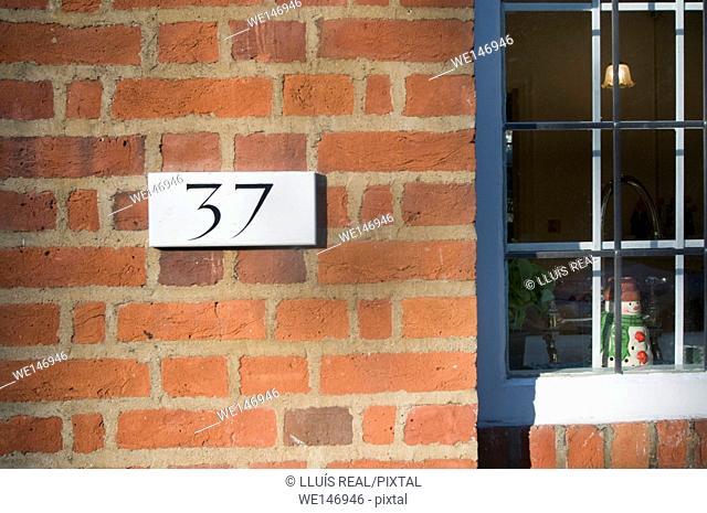 37, Window, Christmas
