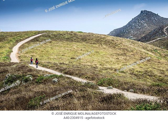 Lachay National Reserve.Huarura.Lima.Perú.Coastal hills ecosystem