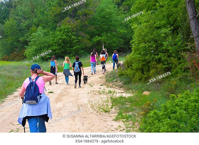 Group of 9 women hiking through the countryside in spring time with backpack and a dog  Photo taken in Pinos, Lleida, Spain, Europe