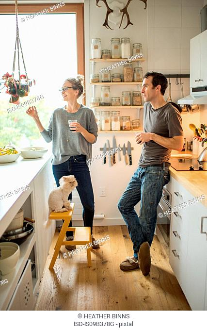 Mid adult couple with red wine chatting in kitchen